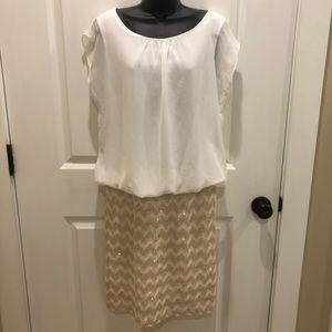 NWT! Sz 10 Karin Stevens white/champagne dress